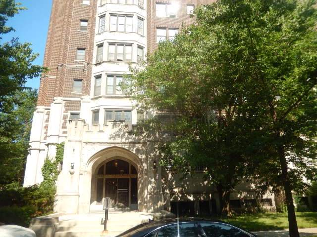 6901 S Oglesby Avenue 11D, Chicago, IL 60649 (MLS #10587829) :: The Wexler Group at Keller Williams Preferred Realty