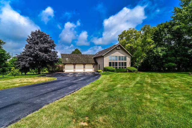 40W516 Bowes Road, Elgin, IL 60124 (MLS #10587858) :: Property Consultants Realty