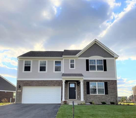2027 Bristol Park Road, New Lenox, IL 60451 (MLS #10587908) :: Property Consultants Realty