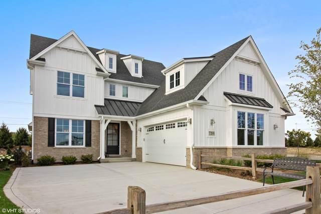 7201 Lakeside (Lot 3) Circle, Burr Ridge, IL 60527 (MLS #10587914) :: Littlefield Group