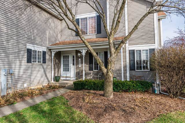 403 Lowell Drive, South Elgin, IL 60177 (MLS #10588124) :: Suburban Life Realty