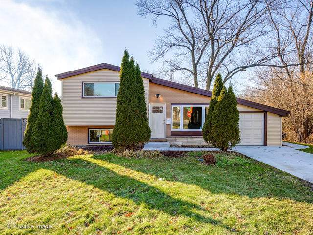 800 Fair Lane, Northbrook, IL 60062 (MLS #10588238) :: Property Consultants Realty