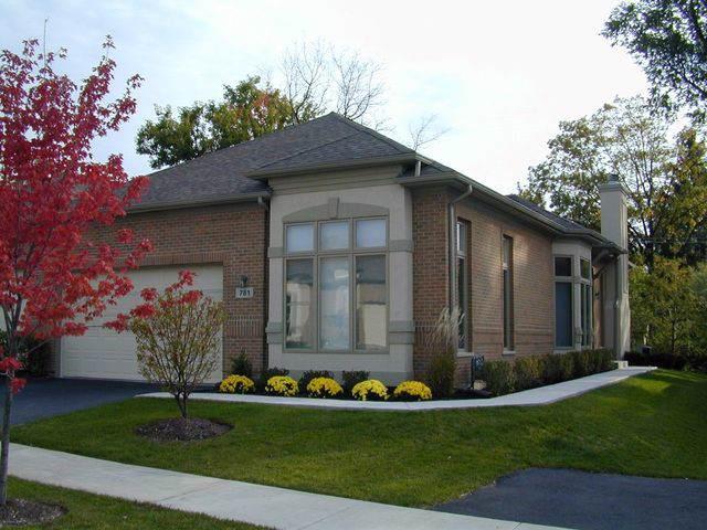 781 N Virn Allen Court, Palatine, IL 60067 (MLS #10588332) :: Helen Oliveri Real Estate