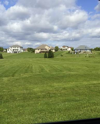 LOT 42 Wilcox Court, Millbrook, IL 60536 (MLS #10588429) :: The Dena Furlow Team - Keller Williams Realty