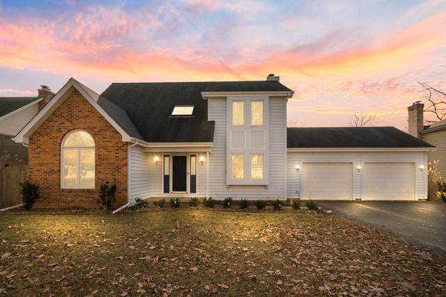 505 Mitchell Drive, Grayslake, IL 60030 (MLS #10588611) :: The Mattz Mega Group