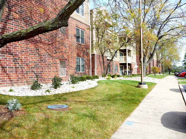 125 Glengarry Drive #201, Bloomingdale, IL 60108 (MLS #10588622) :: The Wexler Group at Keller Williams Preferred Realty