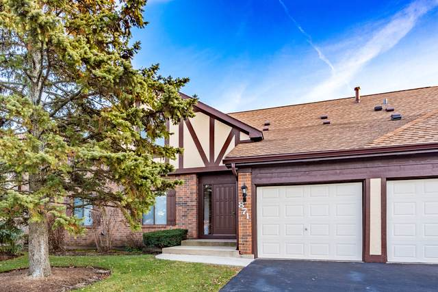 871 Cross Creek Court C3, Roselle, IL 60172 (MLS #10589069) :: Lewke Partners