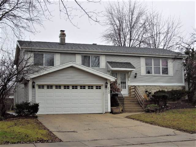 530 Cottonwood Circle, Bolingbrook, IL 60440 (MLS #10589109) :: The Wexler Group at Keller Williams Preferred Realty