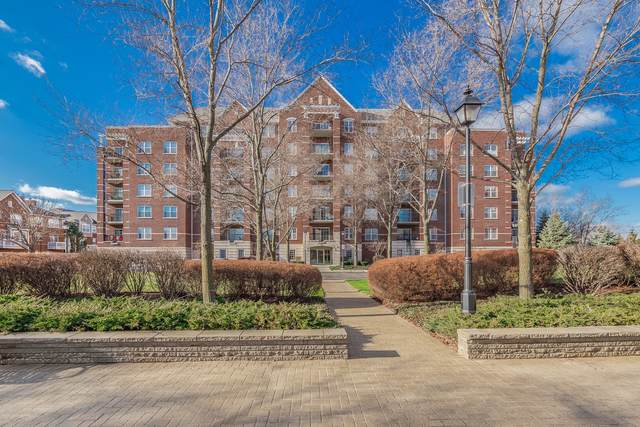 470 W Mahogany Court #601, Palatine, IL 60067 (MLS #10589125) :: Helen Oliveri Real Estate