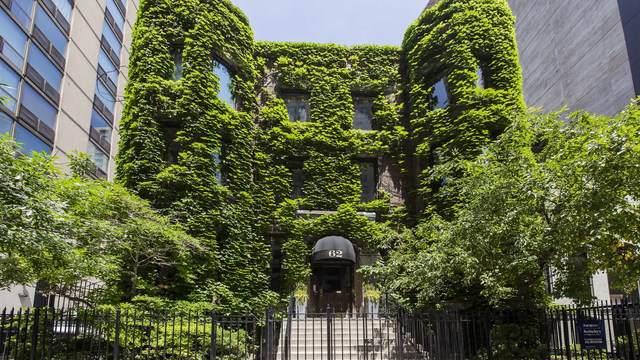 62 Huron Street 1B, Chicago, IL 60654 (MLS #10589574) :: Ani Real Estate