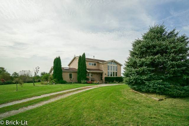 25210 S Schoolhouse Road, Manhattan, IL 60442 (MLS #10590478) :: Property Consultants Realty