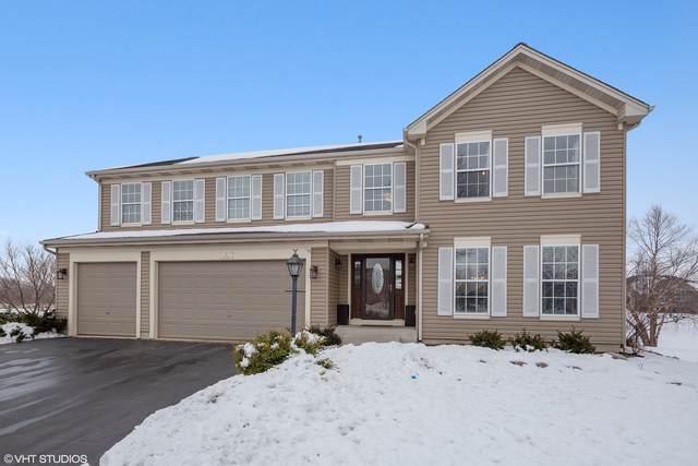5 Joyce Court, Algonquin, IL 60102 (MLS #10590584) :: Ryan Dallas Real Estate