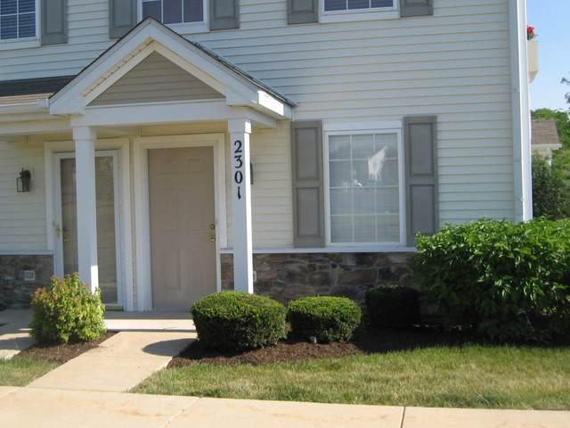 2301 Silverstone Drive #2301, Carpentersville, IL 60110 (MLS #10590851) :: Property Consultants Realty
