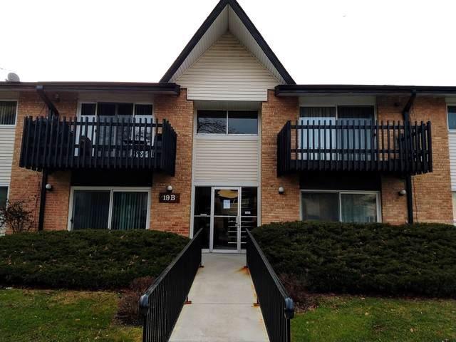 19B Kingery Quarter #206, Willowbrook, IL 60527 (MLS #10591100) :: Ani Real Estate