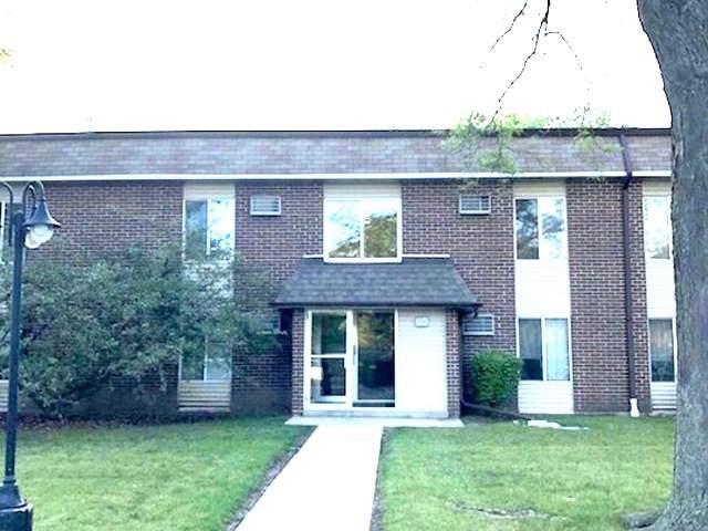 1131 Miller Lane #204, Buffalo Grove, IL 60089 (MLS #10591316) :: Baz Realty Network | Keller Williams Elite