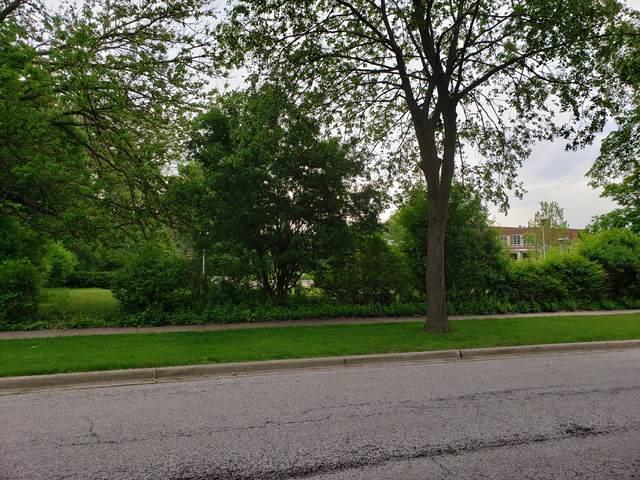 219 S Kenilworth Avenue, Elmhurst, IL 60126 (MLS #10591716) :: Angela Walker Homes Real Estate Group