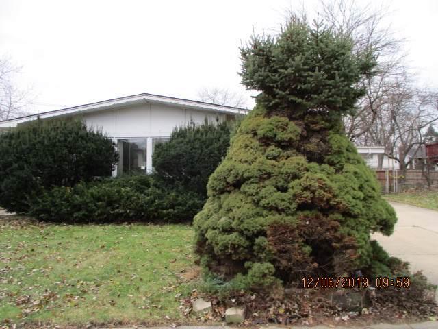 1026 W Iowa Street, Glenwood, IL 60425 (MLS #10591718) :: Property Consultants Realty