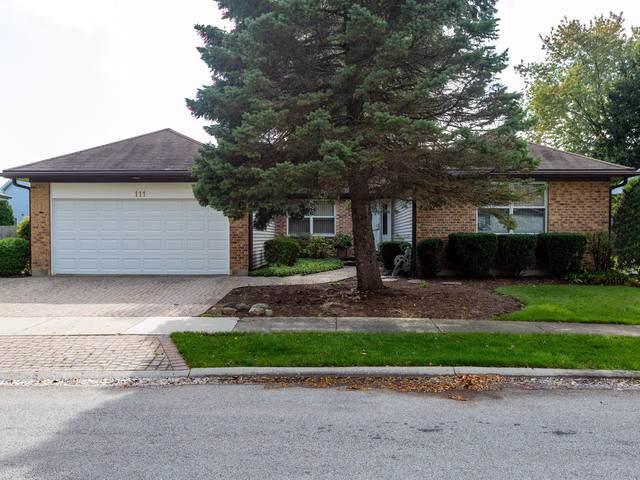 111 Hamilton Place, Vernon Hills, IL 60061 (MLS #10591740) :: Lewke Partners