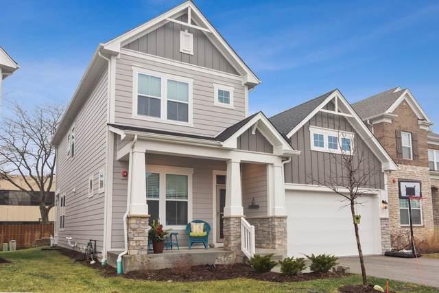 1432 Somerset Place, Barrington, IL 60010 (MLS #10591773) :: Suburban Life Realty