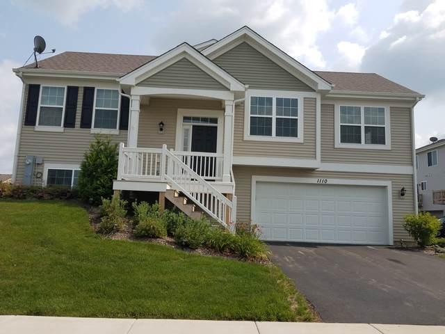 1110 Sapphire Lane, Pingree Grove, IL 60140 (MLS #10591812) :: Jacqui Miller Homes