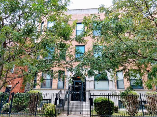 4918 S Indiana Avenue 1N, Chicago, IL 60615 (MLS #10591817) :: Jacqui Miller Homes