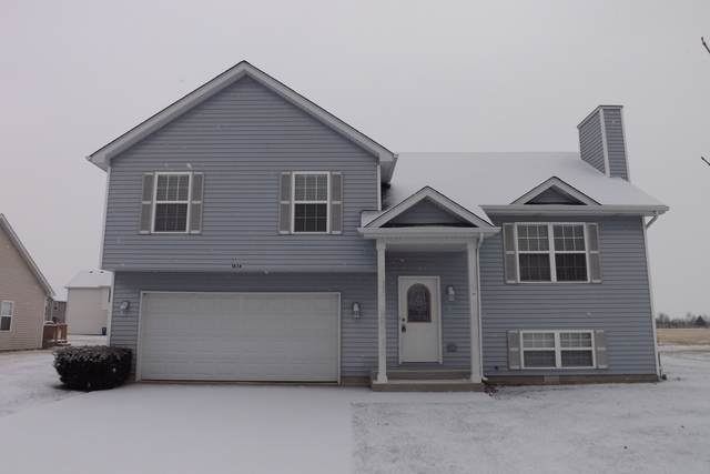 1838 Eagle Drive, Morris, IL 60450 (MLS #10591880) :: The Wexler Group at Keller Williams Preferred Realty