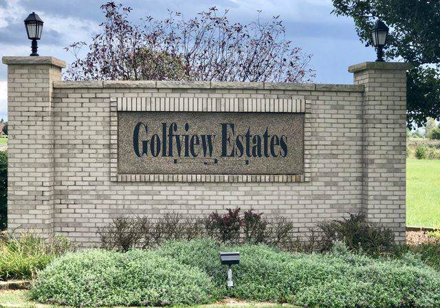 Lot 12 W Golfview Drive, Frankfort, IL 60423 (MLS #10592210) :: The Wexler Group at Keller Williams Preferred Realty