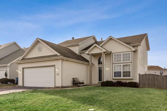 25740 S Daffodil Lane, Monee, IL 60449 (MLS #10592330) :: LIV Real Estate Partners
