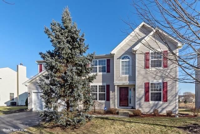 617 N Silver Leaf Lane, Round Lake, IL 60073 (MLS #10592768) :: Ryan Dallas Real Estate