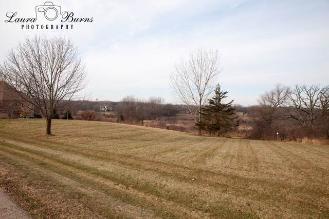 3921 Farmington Lane, Johnsburg, IL 60051 (MLS #10592791) :: Littlefield Group