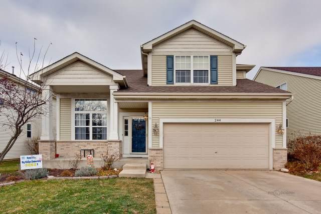 244 S Cornerstone Drive, Volo, IL 60020 (MLS #10592900) :: Ryan Dallas Real Estate