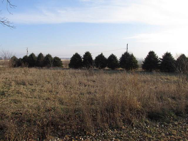 000 Pilgrim Road, Woosung, IL 61091 (MLS #10593132) :: Property Consultants Realty