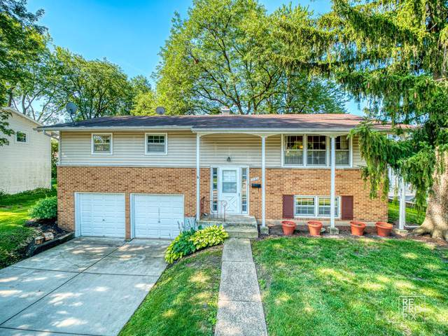 1133 E Pratt Drive, Palatine, IL 60074 (MLS #10593560) :: Berkshire Hathaway HomeServices Snyder Real Estate