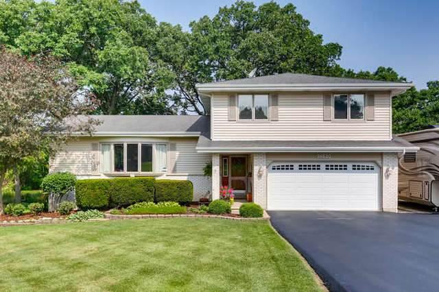 9N620 Tipi Lane, Elgin, IL 60124 (MLS #10593716) :: Knott's Real Estate Team