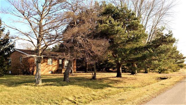 2150 E 550th Road, Oglesby, IL 61348 (MLS #10593940) :: Suburban Life Realty