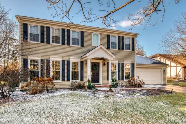 1353 Briergate Drive, Naperville, IL 60563 (MLS #10595142) :: Angela Walker Homes Real Estate Group