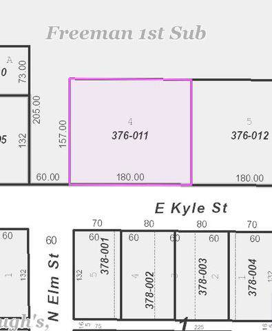 LOT 4 E Kyle Street, OGDEN, IL 61859 (MLS #10595162) :: Littlefield Group