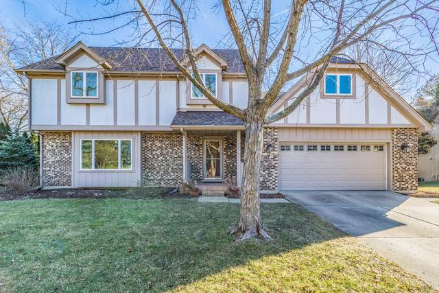 6509 Southbury Court, Lisle, IL 60532 (MLS #10596132) :: Property Consultants Realty