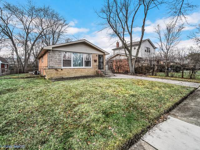 328 Sherry Lane, Chicago Heights, IL 60411 (MLS #10596258) :: Ani Real Estate