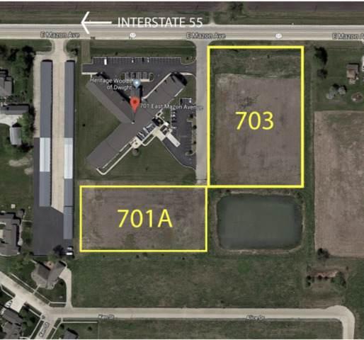 703 E Mazon Avenue, Dwight, IL 60420 (MLS #10596360) :: Century 21 Affiliated