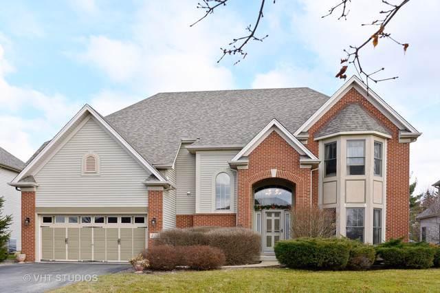 425 Pheasant Hill Drive, North Aurora, IL 60542 (MLS #10596677) :: Property Consultants Realty