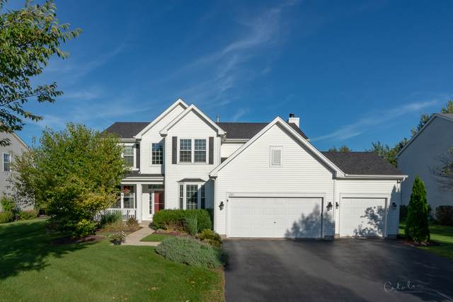 251 Prestwicke Boulevard, Algonquin, IL 60102 (MLS #10596718) :: Angela Walker Homes Real Estate Group