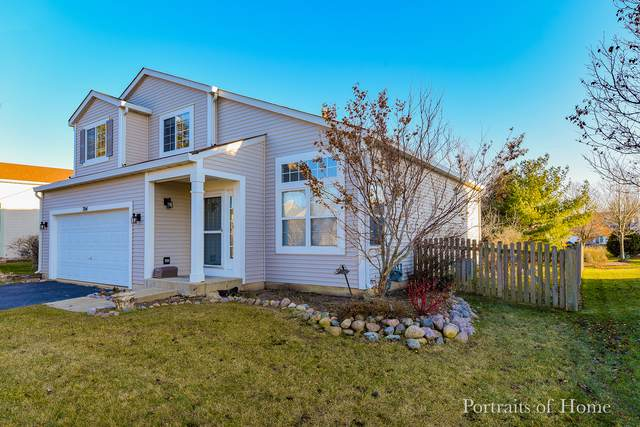 704 Blossom Court, Oswego, IL 60543 (MLS #10597017) :: Angela Walker Homes Real Estate Group