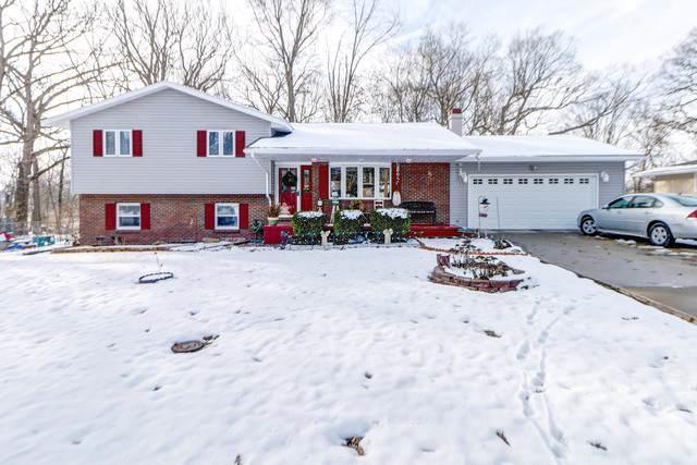 106 Hawthorne Drive, VILLA GROVE, IL 61956 (MLS #10597114) :: Angela Walker Homes Real Estate Group