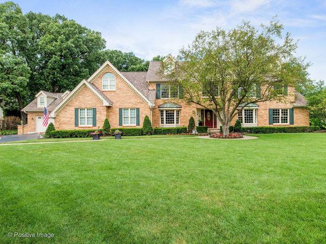 8S020 Creek Drive, Naperville, IL 60540 (MLS #10600004) :: Property Consultants Realty