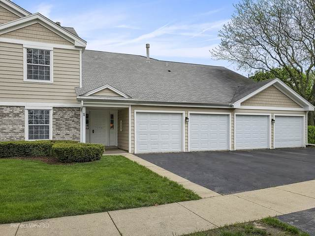1 Trails Drive V2, Schaumburg, IL 60194 (MLS #10600102) :: Property Consultants Realty