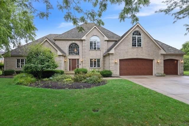 2272 Sable Oaks Drive, Naperville, IL 60564 (MLS #10600517) :: Angela Walker Homes Real Estate Group