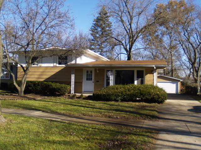 751 N Rainbow Drive, Glenwood, IL 60425 (MLS #10601451) :: Baz Realty Network   Keller Williams Elite