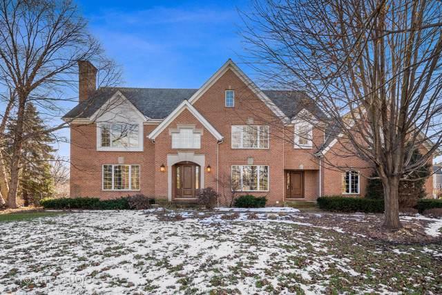 20979 N Wildrose Drive, Deer Park, IL 60010 (MLS #10601550) :: Ani Real Estate