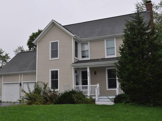 508 Switchgrass Lane, Grayslake, IL 60030 (MLS #10601673) :: John Lyons Real Estate